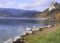 Olympiads in Bled, Slovenia